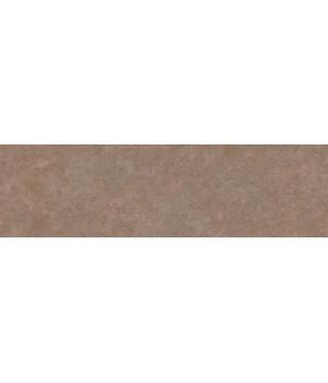 Подступенок Виченца коричневый