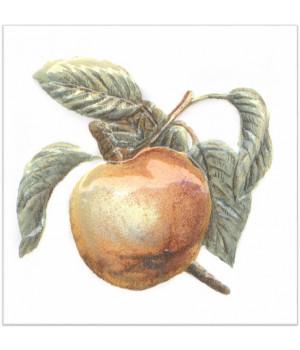 Декор Оранжерея Яблоко