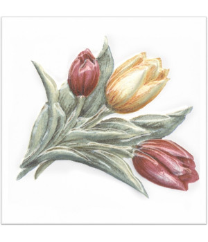 Декор Оранжерея Тюльпаны