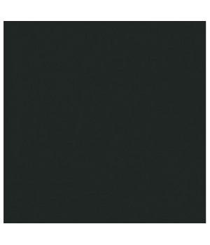 Керамический гранит Monocolor black RAL7021 PG 01